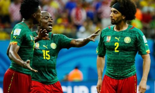 Камерун - Бразилия: прогноз на матч. Прогнозы на Чемпионат Мира