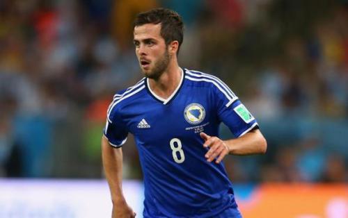 Уэльс - Босния: прогноз на матч. Прогнозы на отборочные матчи